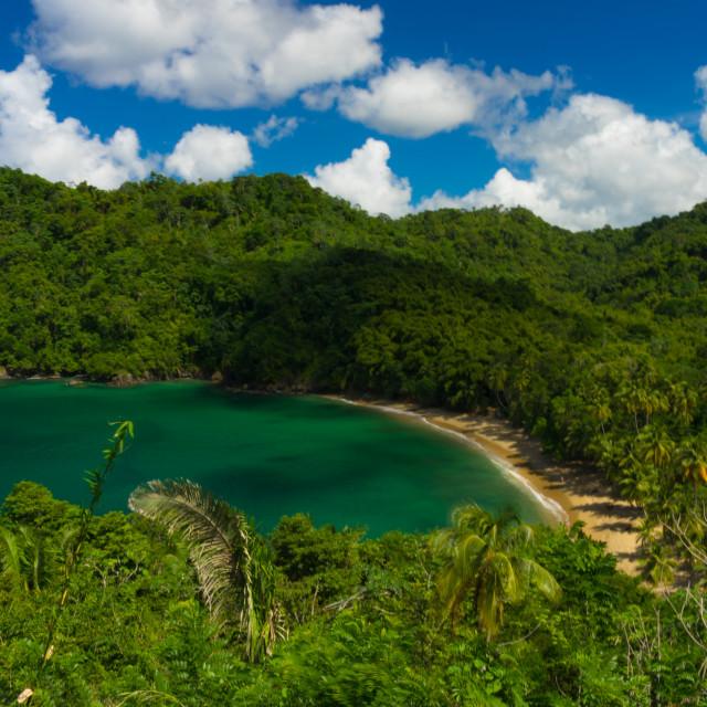 """""""Englishman's Bay, Tobago"""" stock image"""
