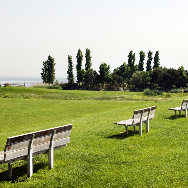 """""""Row of benches"""" stock image"""