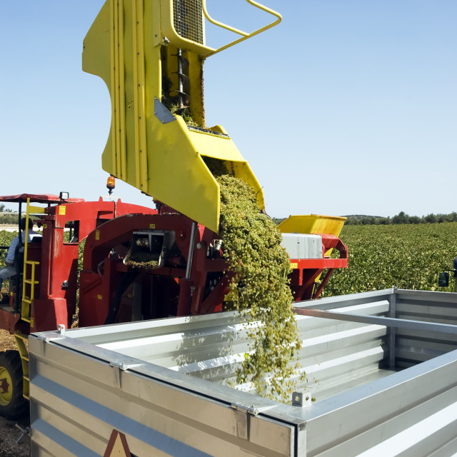 """Grape harvesting machinery"" stock image"