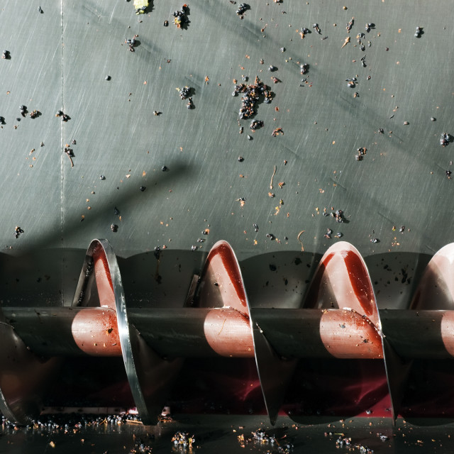 """""""Wine production screw auger"""" stock image"""