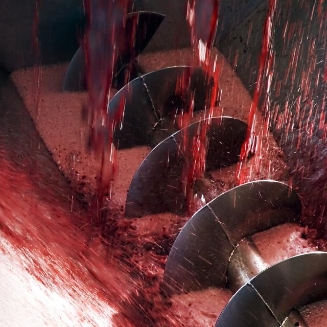 """""""Winemaking machine"""" stock image"""