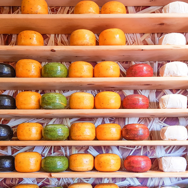 """Shelves stocked with different types of cheese, Netherlands"" stock image"