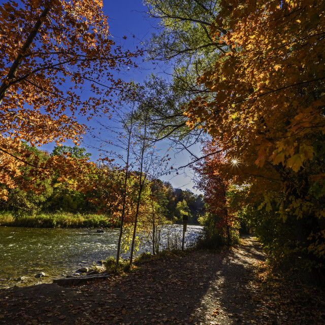 """""""Culham Trail in Fall 614"""" stock image"""