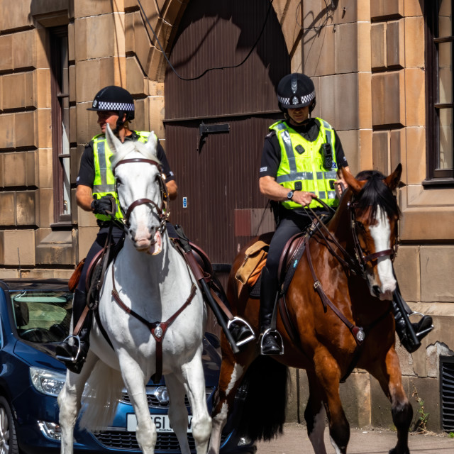 """""""Horses on Patrol under the control of the police"""" stock image"""