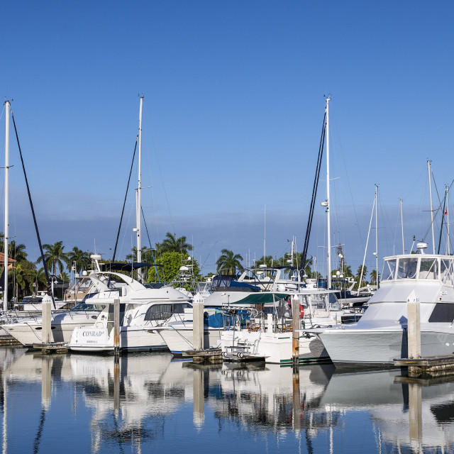 """Marco Island Marina"" stock image"