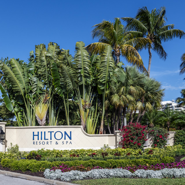 """""""The Hilton Resort and Spa in Marco Island in Florida"""" stock image"""
