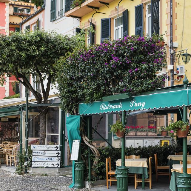 """Restorante Puny in the charming town of Portofino"" stock image"
