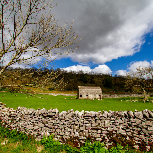 """""""Traditional Field Barn in The Yorkshire Dales"""" stock image"""