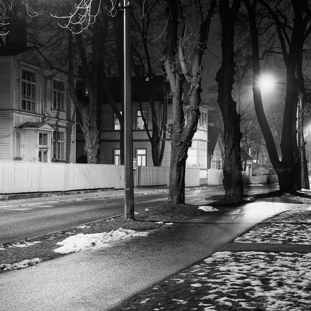 """""""Trees by a Night Street"""" stock image"""