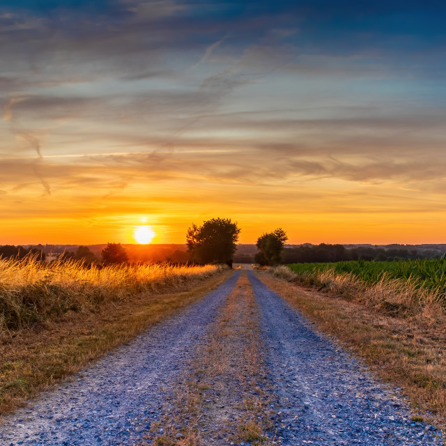 """Golden sunrise over the fields in the country"" stock image"