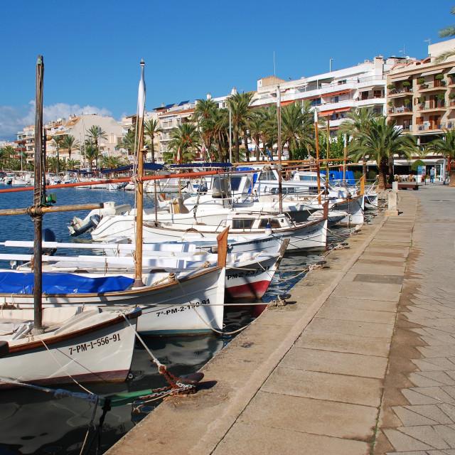 """Alcudia port, Majorca"" stock image"