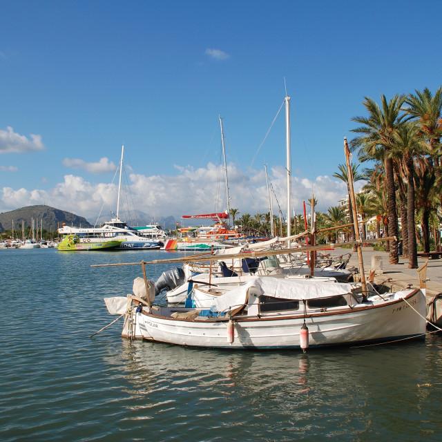 """Alcudia harbour, Majorca"" stock image"