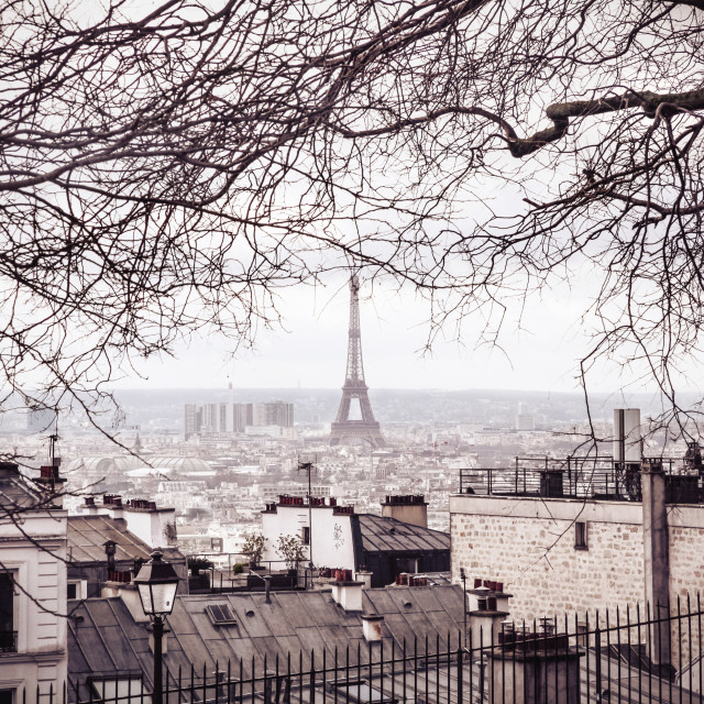 """""""The Eiffel Tower from the Montmartre disctrict"""" stock image"""