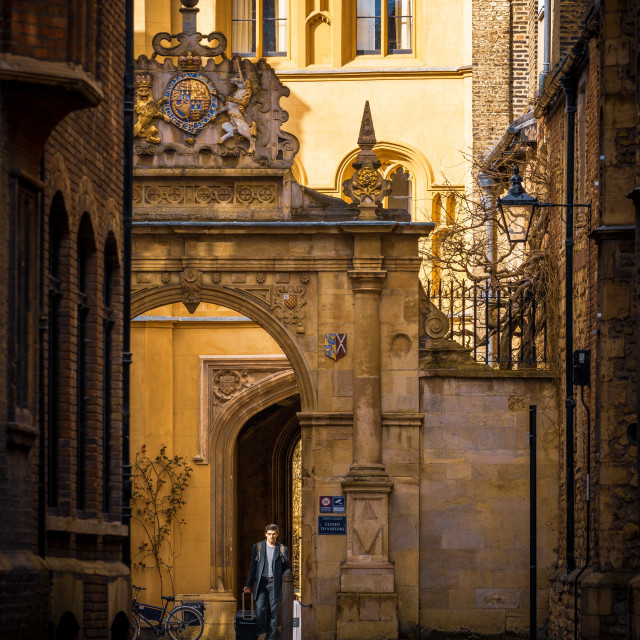 """Trinity College East Gate, University of Cambridge UK."" stock image"