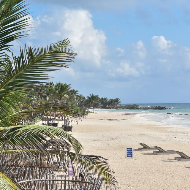"""Tulum beach"" stock image"