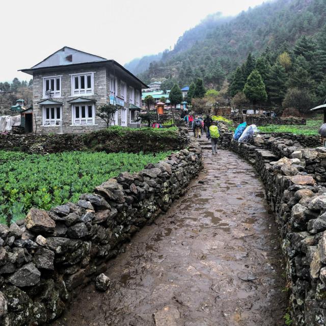 """""""Village of Sagarmatha Natural Park"""" stock image"""
