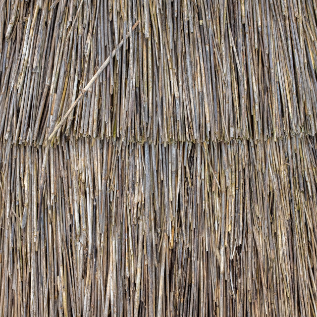 """""""Thatched Roof Detail Texture"""" stock image"""