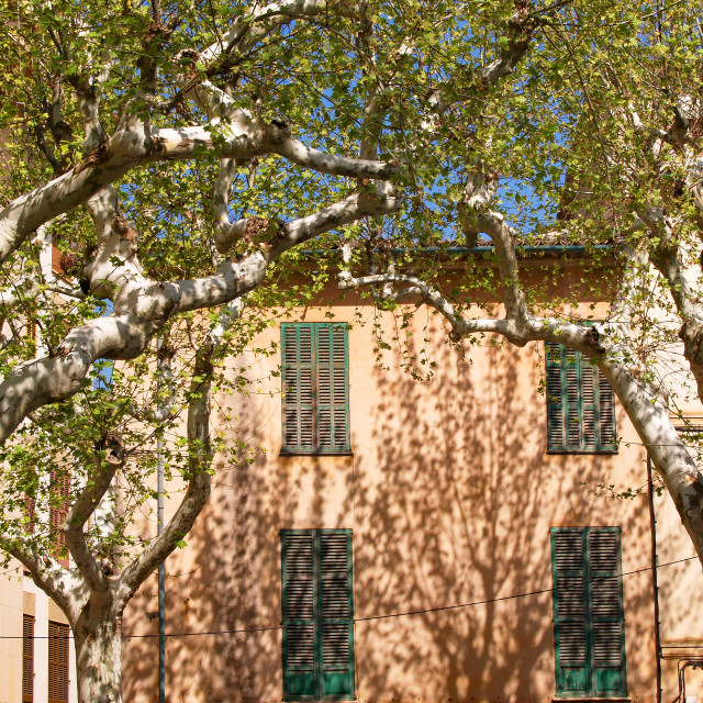 """""""Soller House in Spring"""" stock image"""