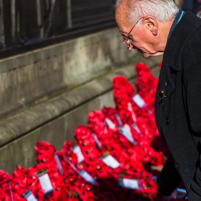 """War veteran at the Liverpool cenotaph"" stock image"