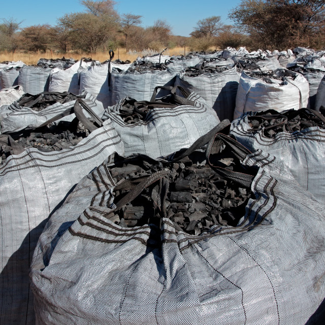 """""""Bags of charcoal on a rural farm - Namibia"""" stock image"""