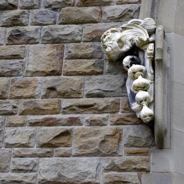 """""""Clyne Chapel carved head with garlic"""" stock image"""