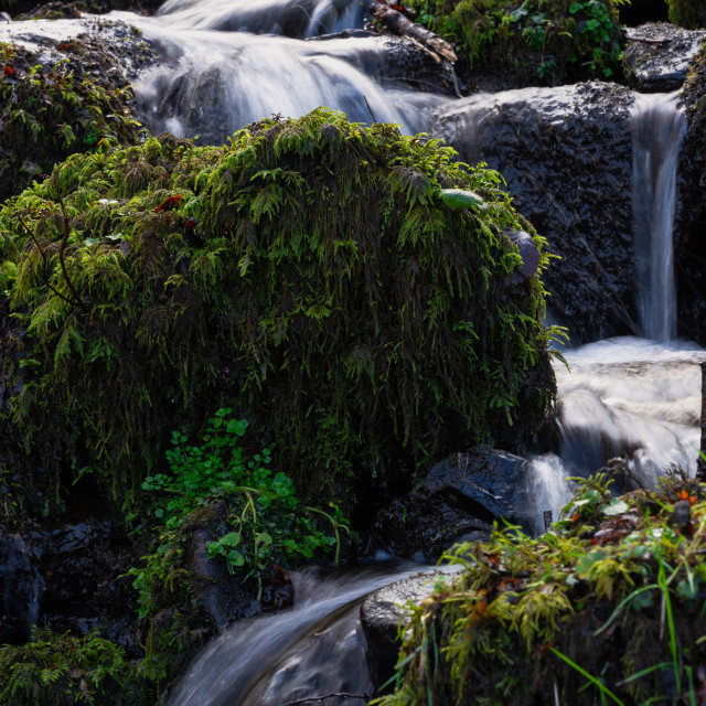 """""""fast water flowing down the small river after heavy rainfall"""" stock image"""