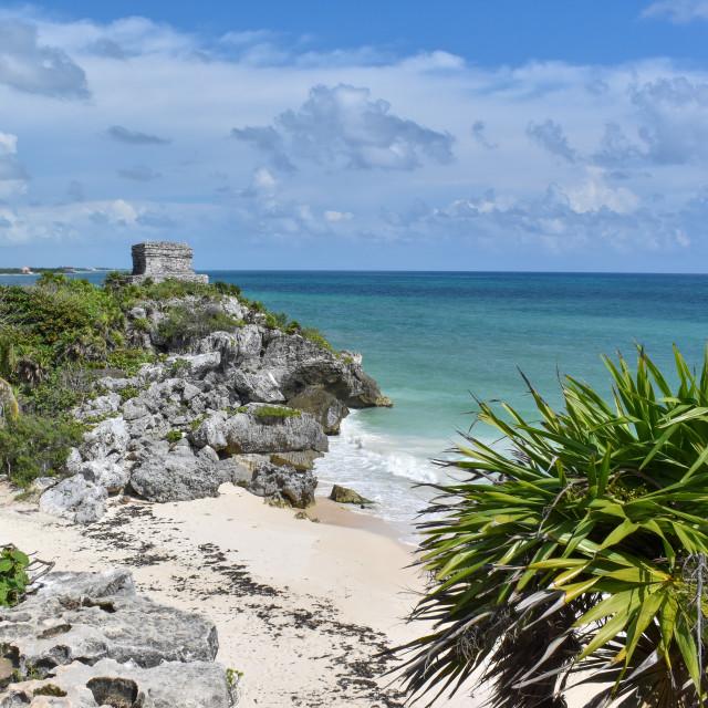 """Seascape at Tulum Mayan Ruins"" stock image"