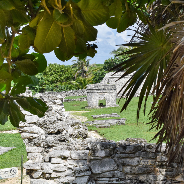 """""""Mayan temples in Tulum, Quintana Roo, Mexico"""" stock image"""