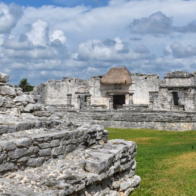 """Mayan temple landscape"" stock image"