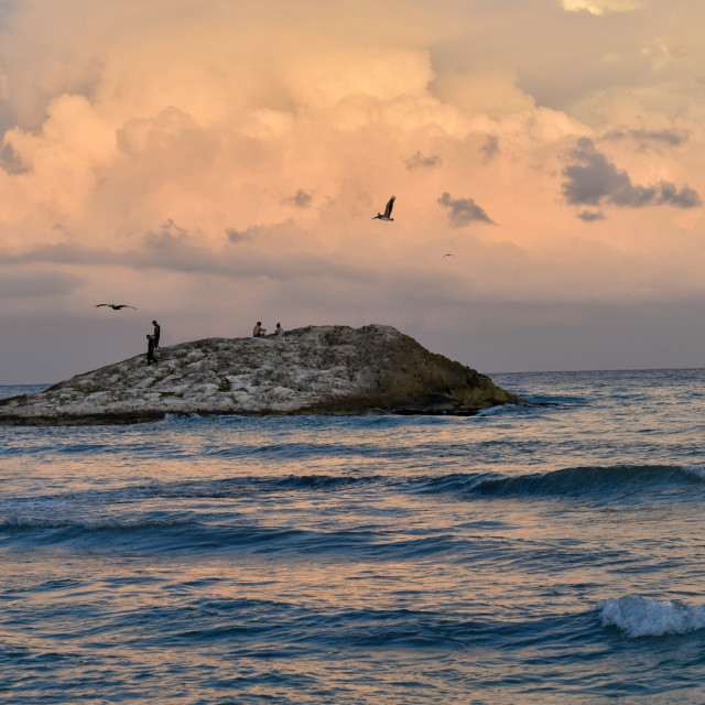 """Birds hover around Tulum beach"" stock image"