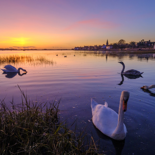 """Winter sunset over Bosham harbour, West Sussex"" stock image"