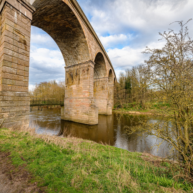 """Roxburgh Viaduct, River Teviot, Scottish Borders, UK"" stock image"