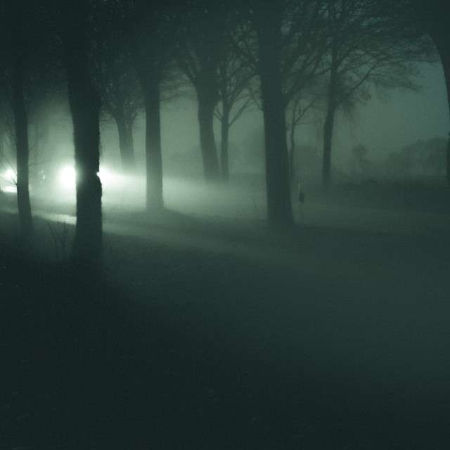 """Surreal Headlights trough trees"" stock image"