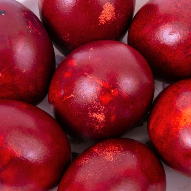 """""""Hard Boiled Eggs, Dyed Red for Easter"""" stock image"""