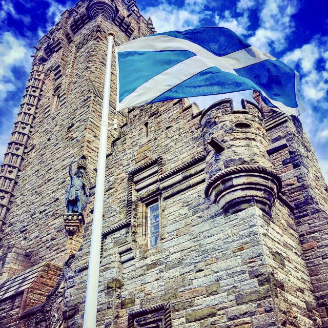 """Scottish Pride"" stock image"