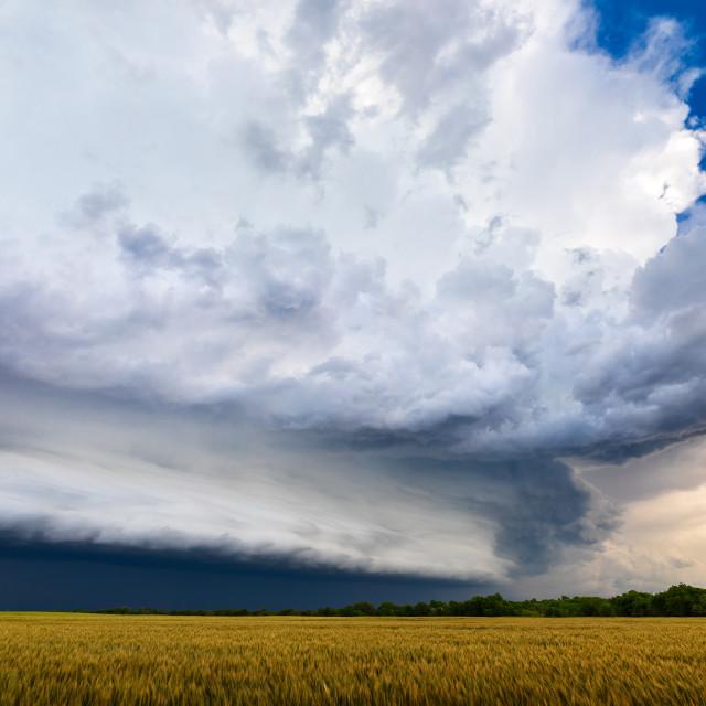 """""""Stormy sky"""" stock image"""