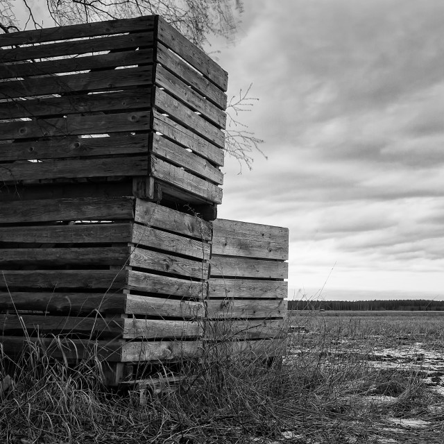 """""""Three Crates On A Spring Field"""" stock image"""