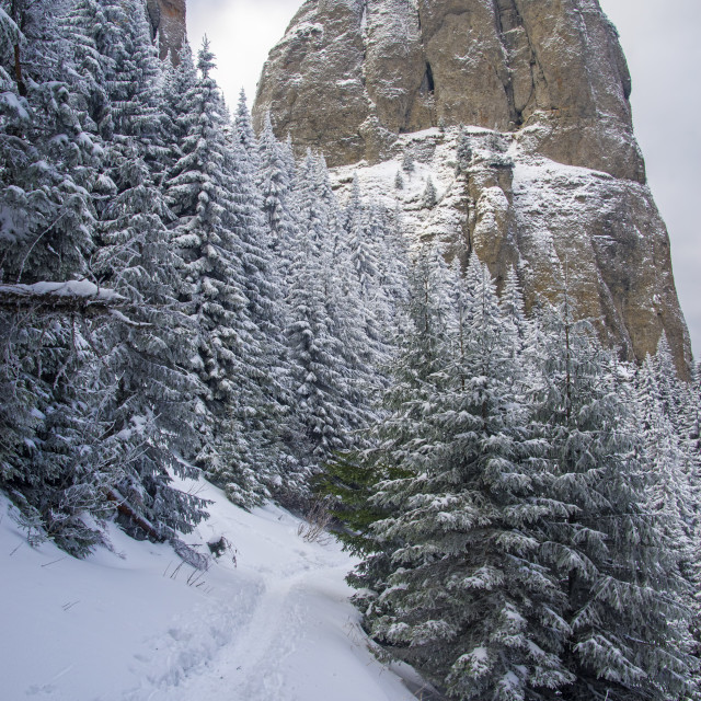 """""""Snow path near huge rock in the mountains."""" stock image"""