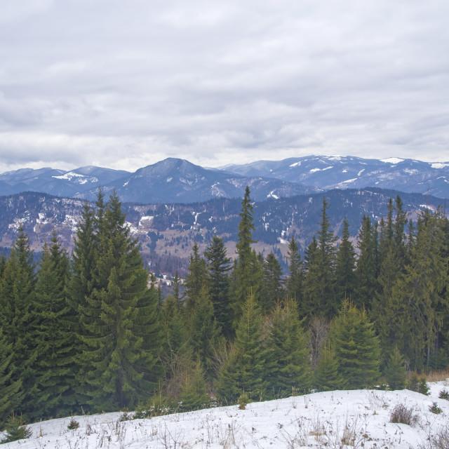 """Winter mountain landscape"" stock image"