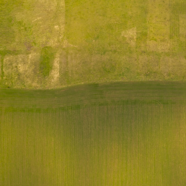"""""""Green scene from above"""" stock image"""
