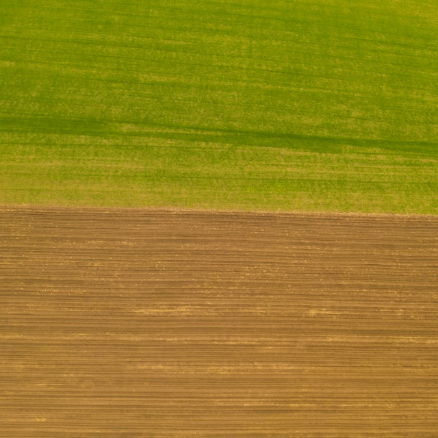"""""""Fields texture from above"""" stock image"""