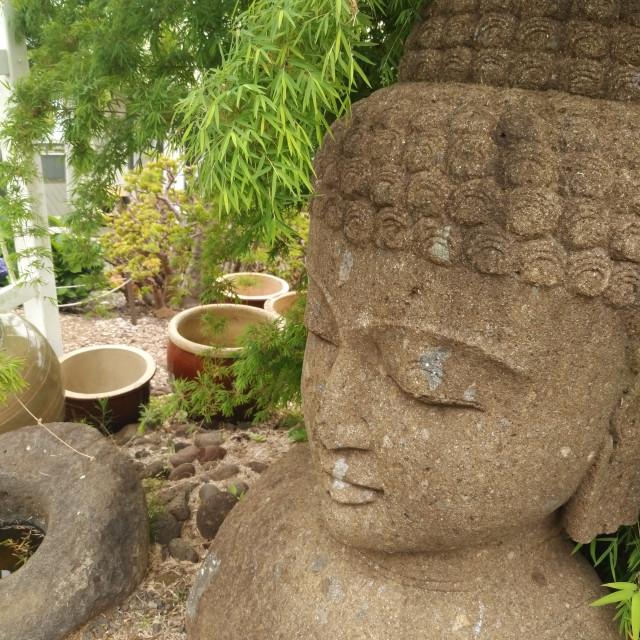 """""""Kula Buddha"""" stock image"""