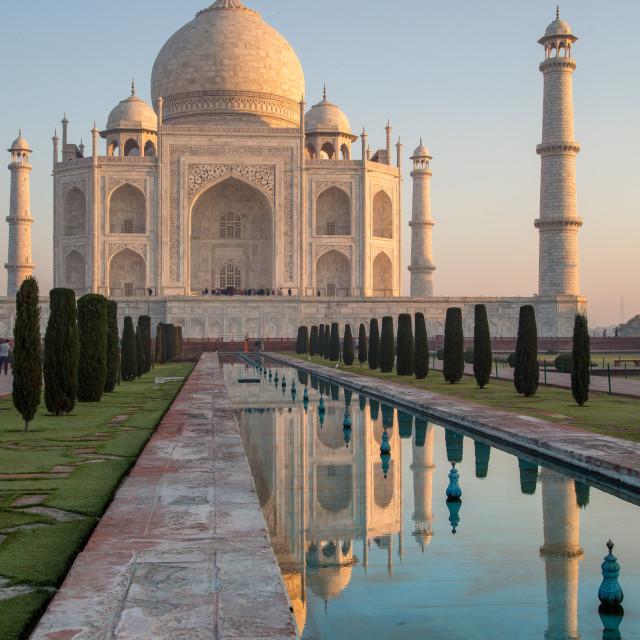 """""""The Incomparable Taj"""" stock image"""