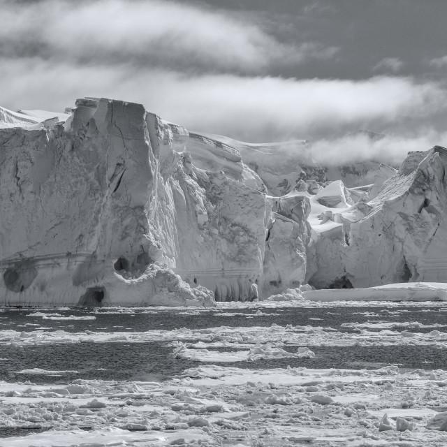 """""""Monochrome Iceberg in Antarctica"""" stock image"""