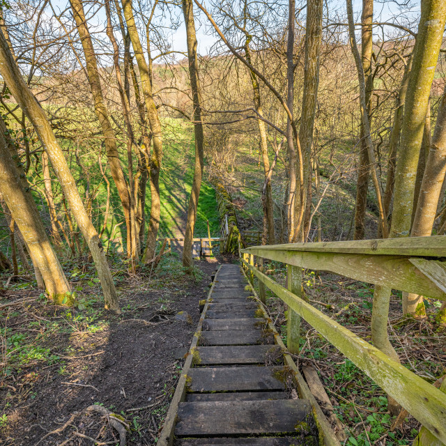 """Wooden Steps on Four Borders Abbeys Way Long Distance Footpath"" stock image"