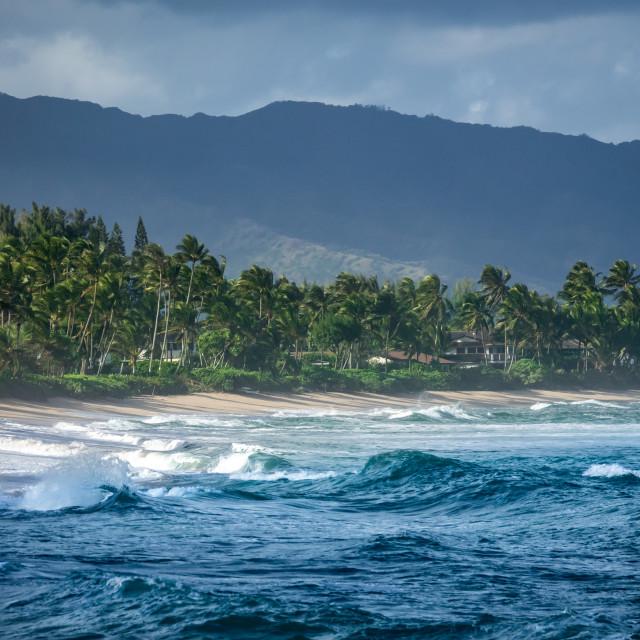"""Luxury Houses On The Hawaiian North Shore"" stock image"
