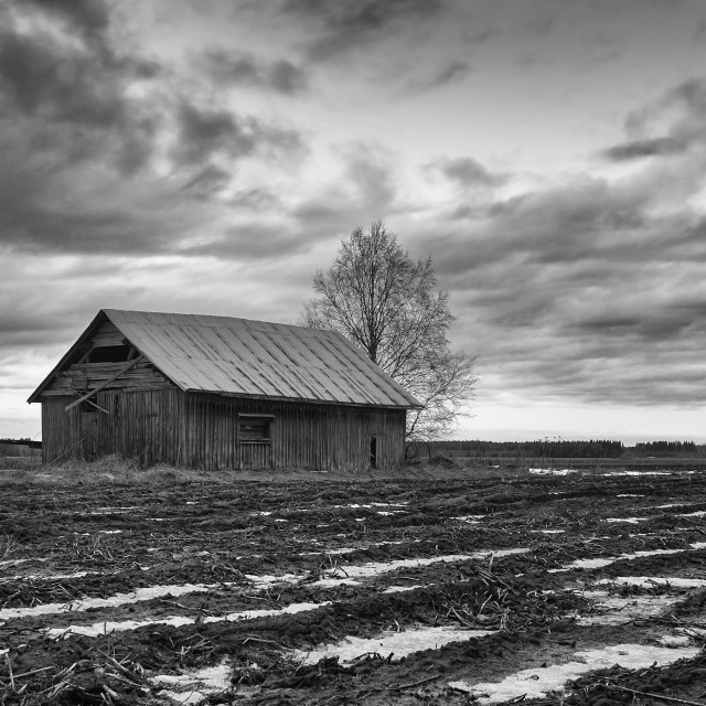 """Abandoned Barn House Under The Dramatic Skies"" stock image"