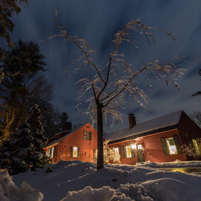 """Ice Tree in New Hampshire"" stock image"