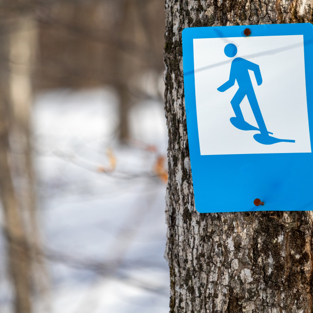 """""""A Snowshoe Trail Marker Sign"""" stock image"""
