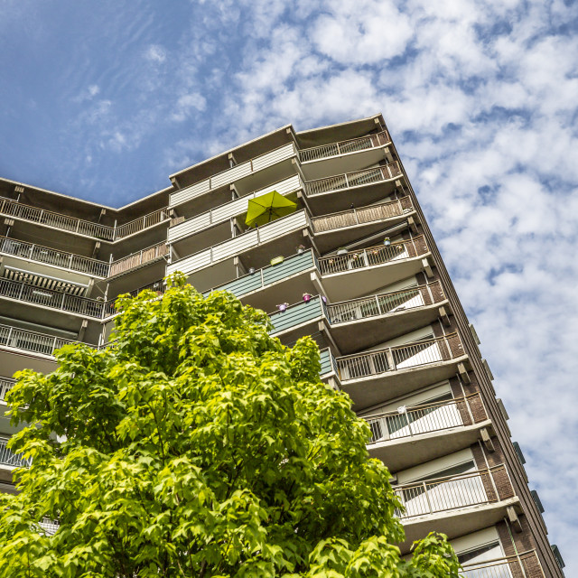 """High rise building with tree"" stock image"
